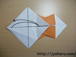 B イノシシ_html_mf6df52a
