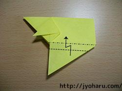 B イノシシ_html_66042065