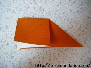 C かぼちゃ_html_72fa47e7